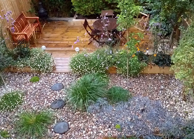 Low maintenance seaside-style garden