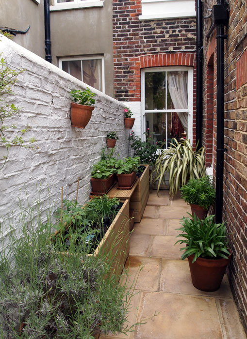 Brighton Seaside Garden : Lilybud Gardens By Design